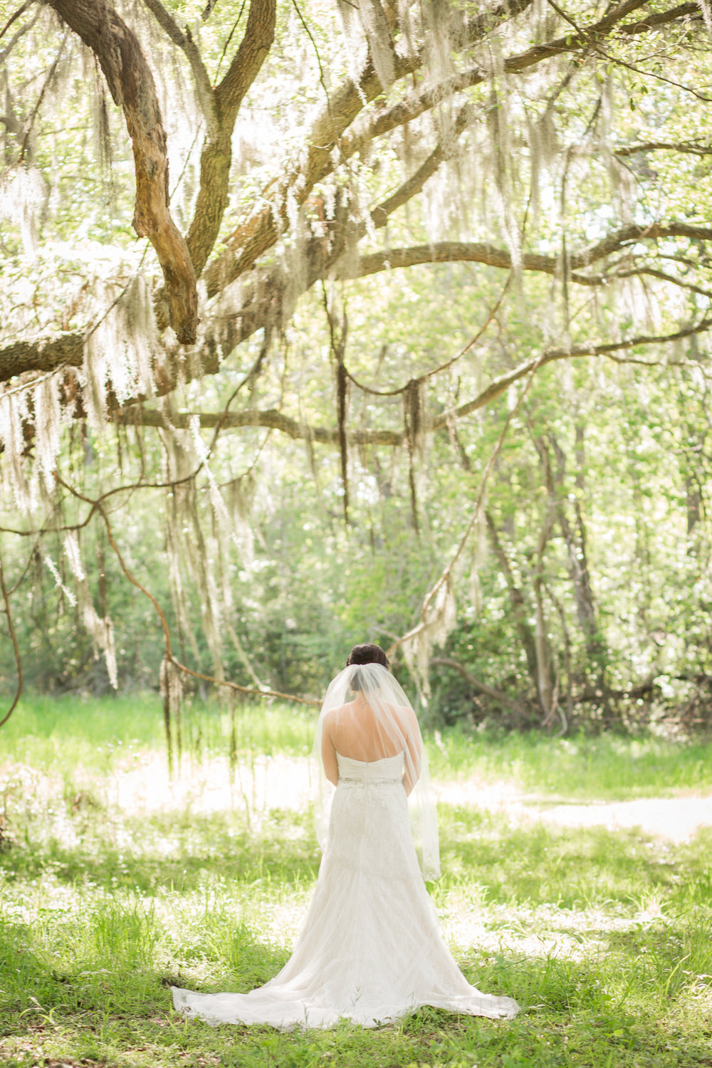savannah-wedding-13.jpg