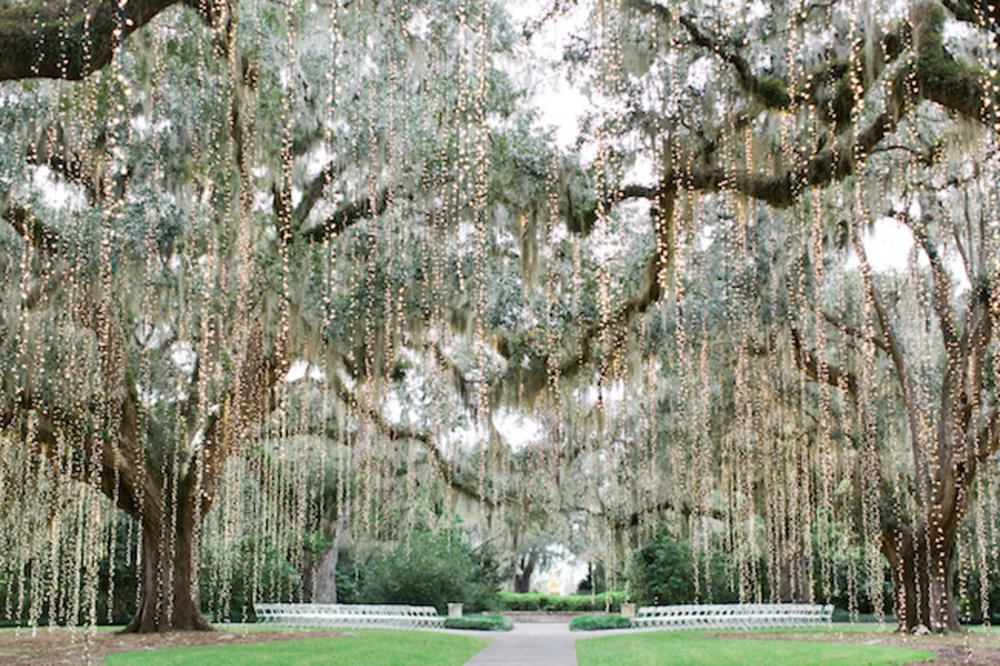 brookgreen-gardens-wedding-17.jpg