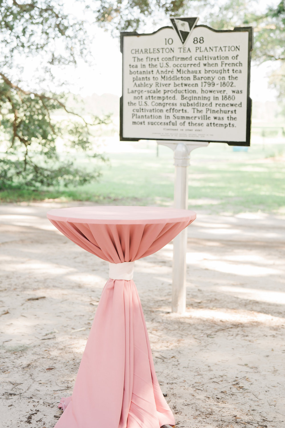charleston-tea-plantation-wedding-32.jpg