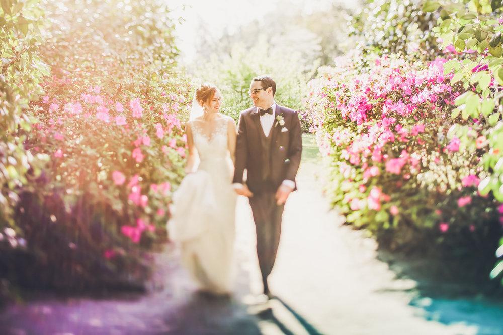 middleton-place-wedding-25.jpg