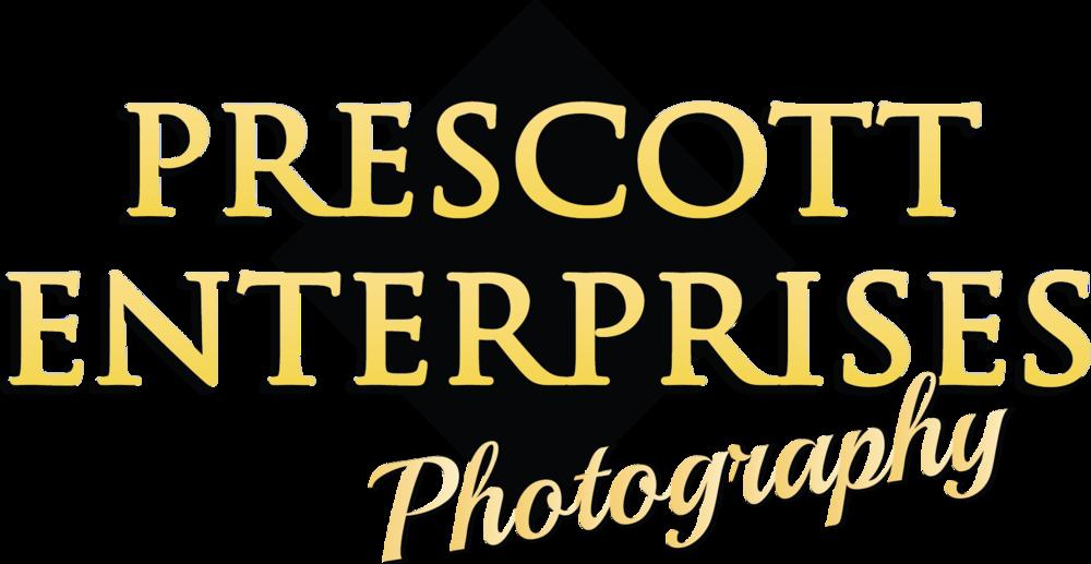 PrescottEnterprisescolor.png