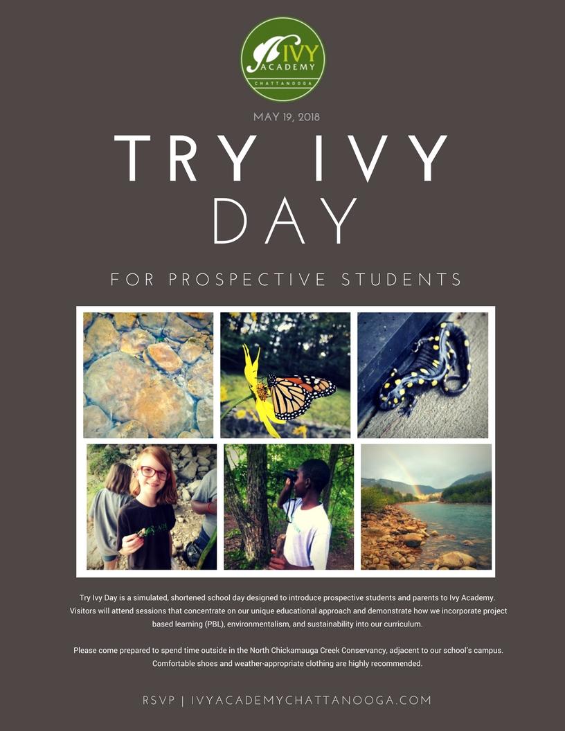 Copy of Try Ivy flyer.jpg