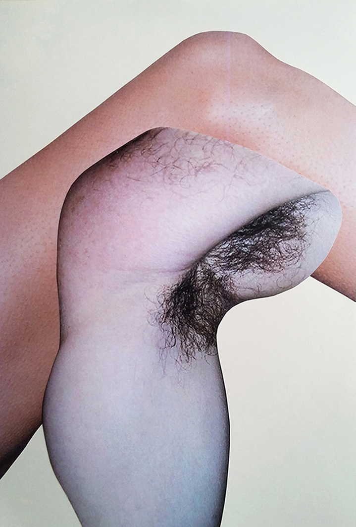 Eleni Bagaki, Hairy armpits & Knee, DETAIL, collage, 29 x 42 cm, 2015