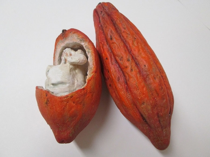 Cocoa Pods, Chocolate Exhibit