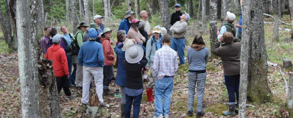 May-2015 hike along Big Bay Ridge Trail lead by naturalist, John Bates