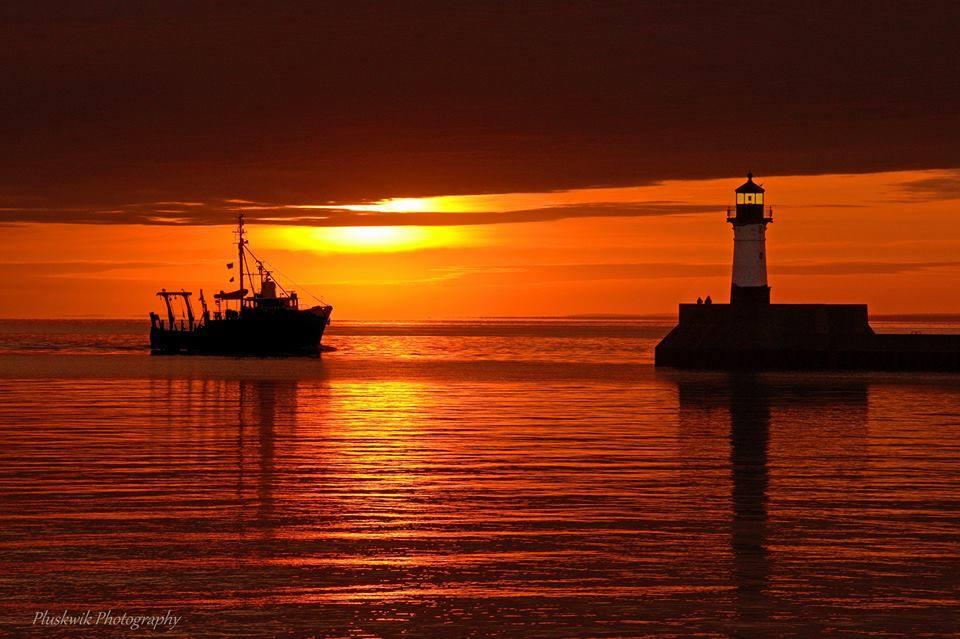 Blue Heron Sunset.jpg