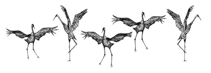 Dancing Cranes.png