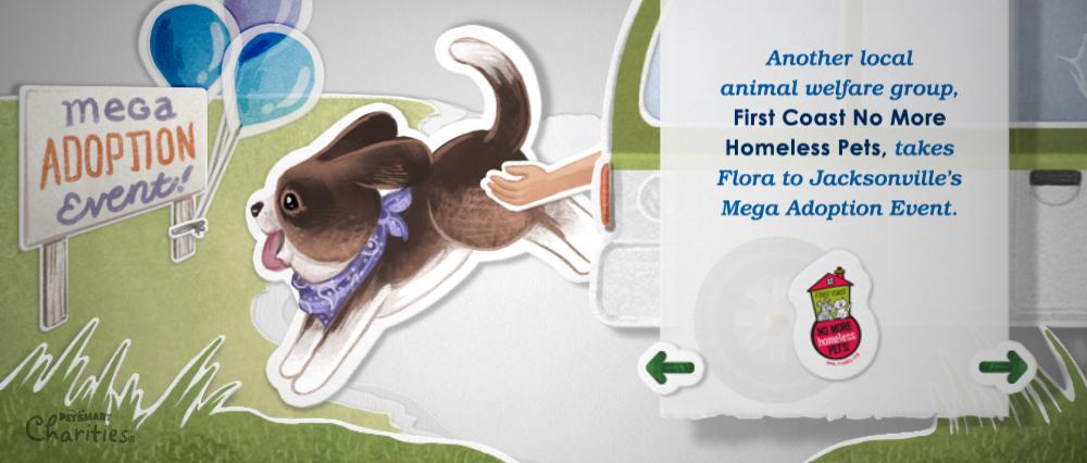 AngelaGasparetti_PetSmart_JAX_Full04.jpg