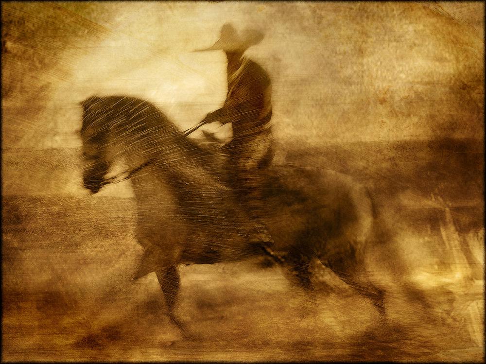 Equine Art 10