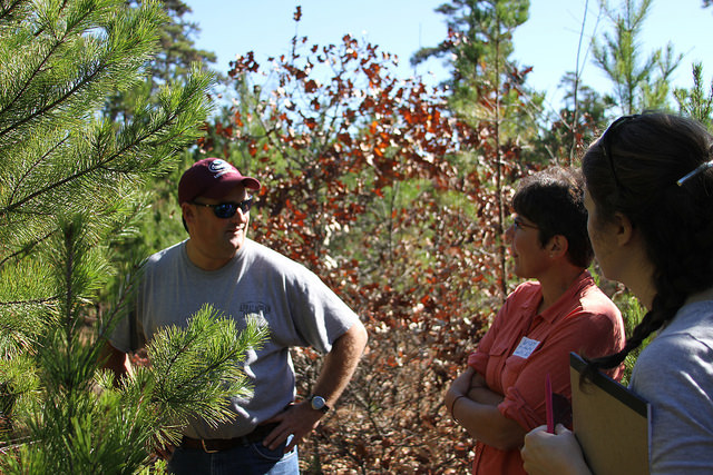 Steve Lee of Lee Brothers Cranberry and Wendy Fulks of Fire Adapted Communities at Speedwell site. Photo by Amanda Mahaffey