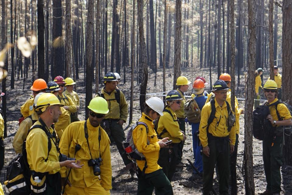 Consortium group observe area after a burn. Photo by Brian Wiebler
