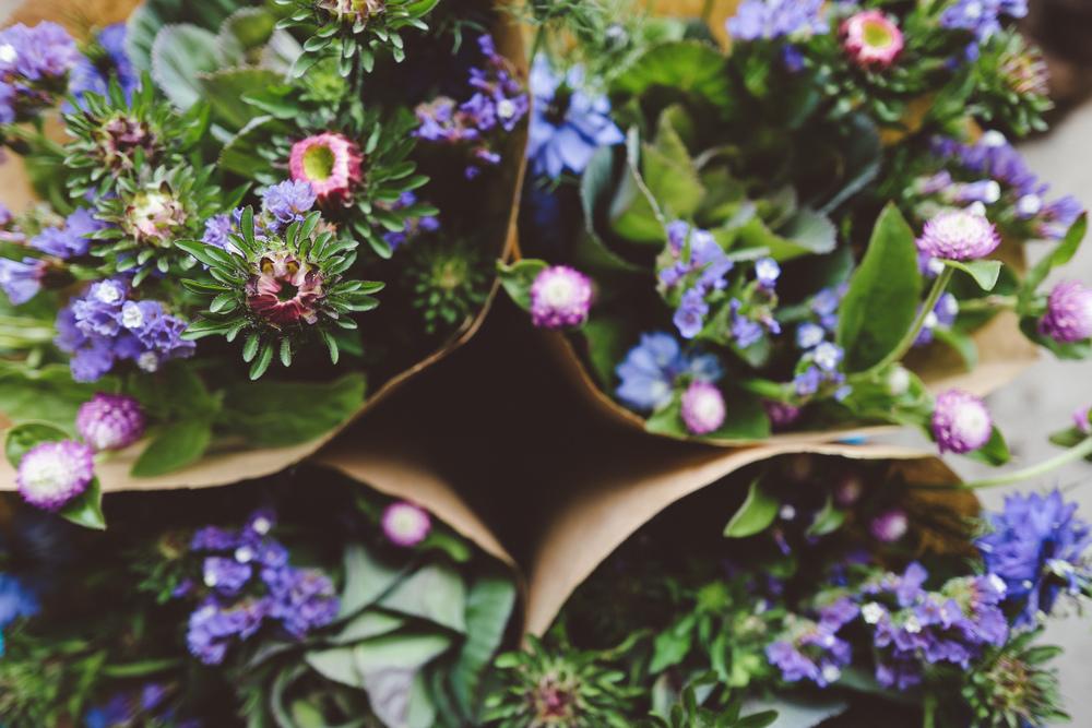 ferme florale Floramama