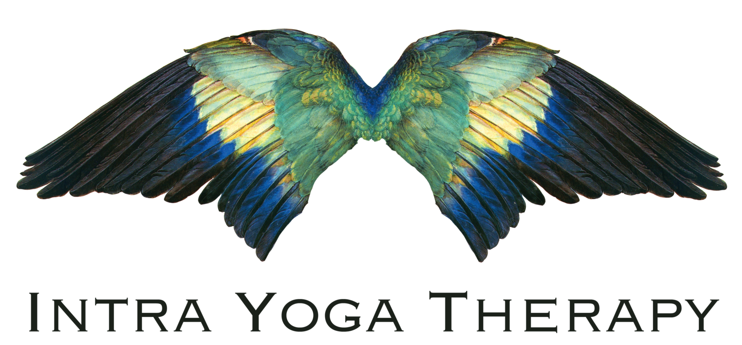 Intra Yoga Therapy: yoga classes, workshops & private yoga therapy in Boston, MA