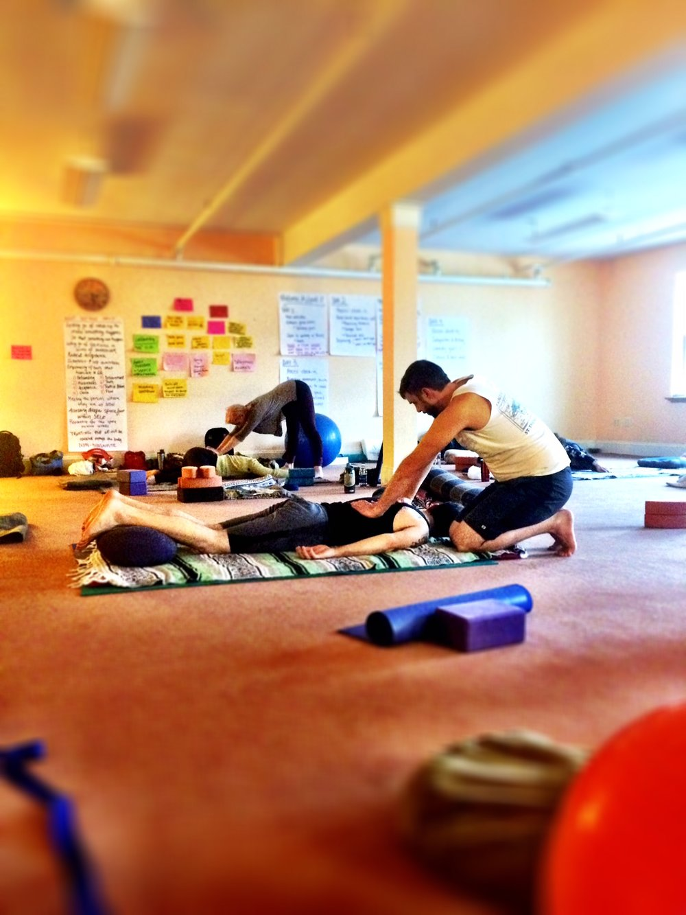 Yoga Therapy with Alex Bauermeister Boston