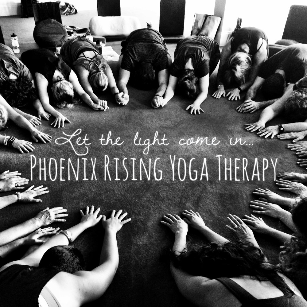 Phoenix Rising Yoga Therapy with Alex Bauermeister.jpg