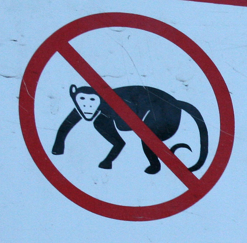 """Απαγορεύονται οι """"μαϊμούδες""""!  photo by  Chris Seward"""