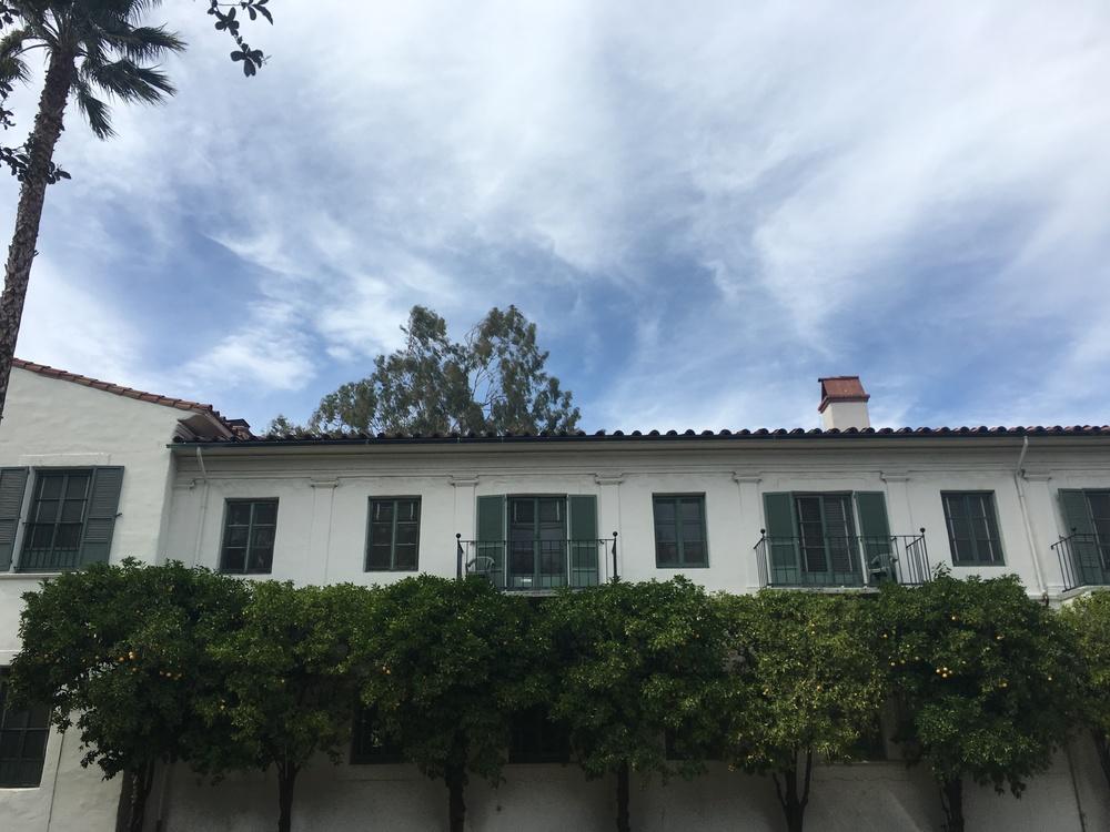 Orange trees below resident balconies!