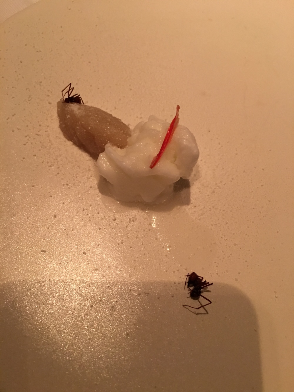 Our dessert featuring ants at DOM
