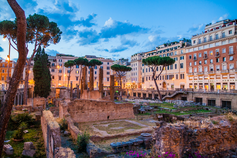Largo di Torre Argentina; the site of four Roman temples.  We stumbled upon this as we were walking from out hotel to dinner.
