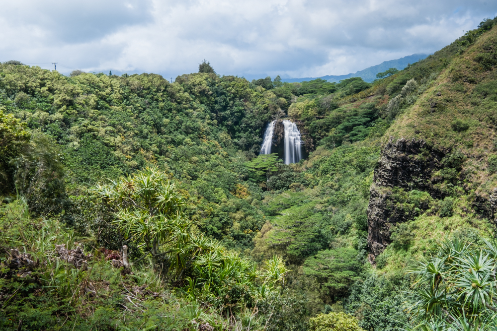 "Opaeka'a means ""rolling shrimp."" It is located on the eastern side of the island in Wailua. Opaeka'a Falls is easy to get to in terms of no hiking involved and there's a large parking lot with restrooms available."
