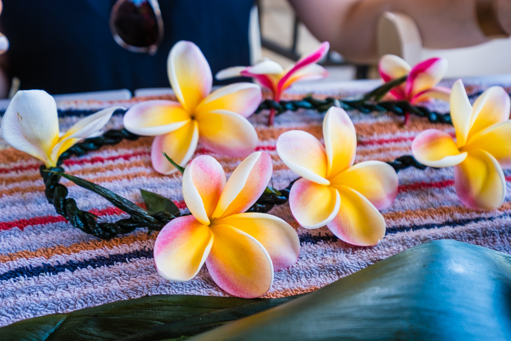 These plumerias inspired us to buy a plumeria root to plant back home. The roots can be purchased in gift shops and airlines allow you to bring them in your luggage.