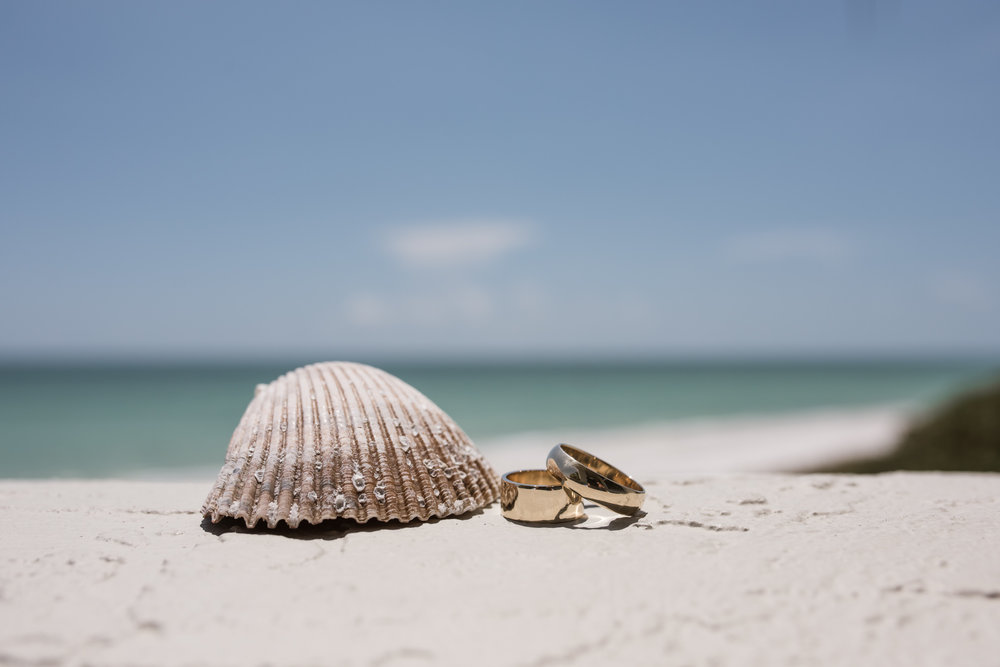 Wedding Bands and a seashell on the beach at a Sarasota Wedding at the Longboat Keyclub