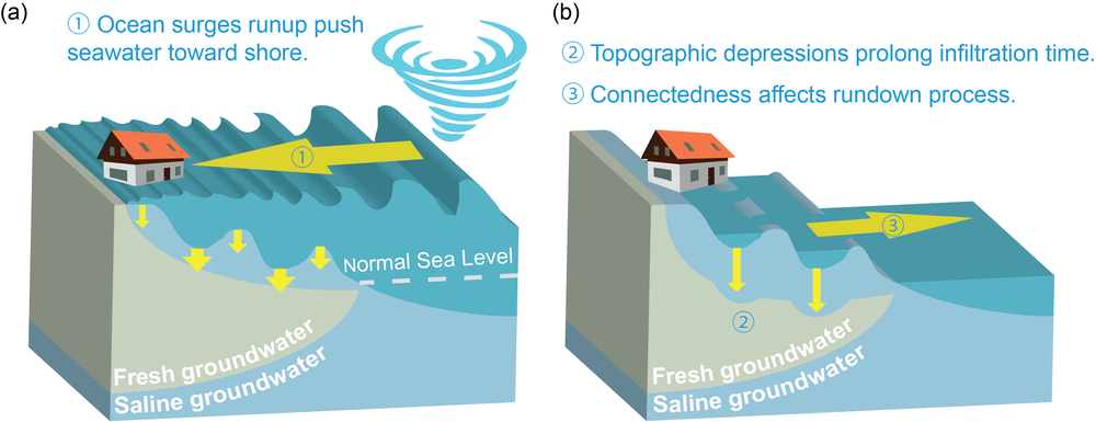 Schematic illustration of the ocean surge-introduced saltwater infiltration at the surface of a coastal aquifer.