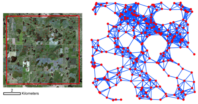 A wetland landscape in central North Dakota (left) and the associated network (right) created with a graph-theoretical approach. Circles represent nodes (i.e., centroids of wetlands) and lines represent links between nodes that have a distance less than a threshold value or disperse distance of 1000 m.