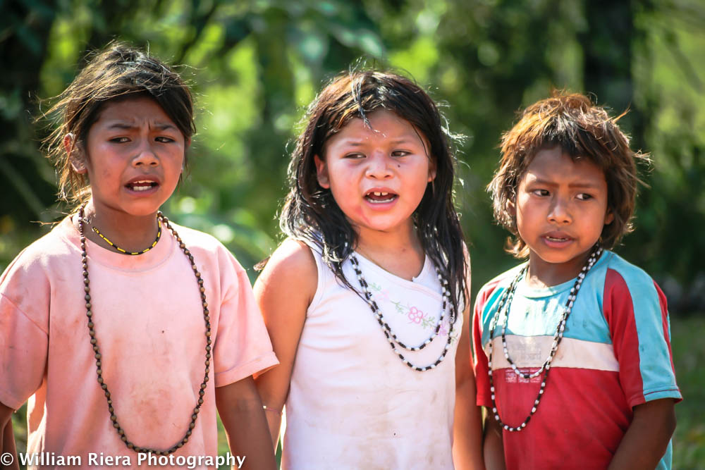 2007-09-IguazuFalls-381.jpg