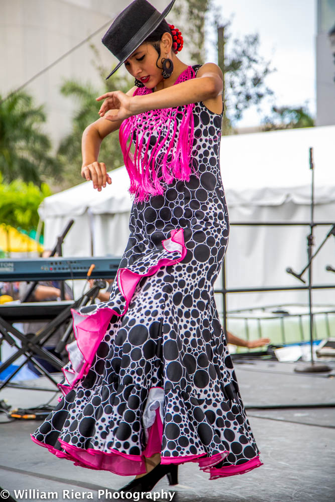2013-11-MiamiBookFair-1252.jpg