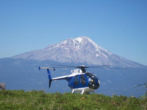 Mount-Shasta-2.jpg