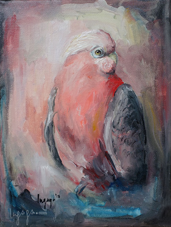 SINGING GUACAMAYA  18 x 20cm  Oil on linen / 2014