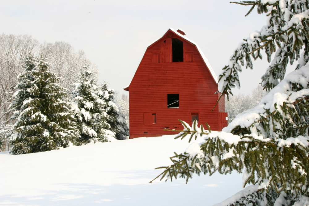 "Red Barn, 1st Place in Scenic Virgina's ""Farms & Open Spaces"" 2011 and 3rd Place in Fredericksburg Art & Photography Show 2015."