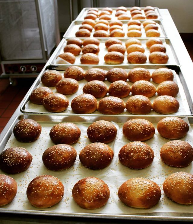 Making America buns again!  #docsclassic #burgers #oakland