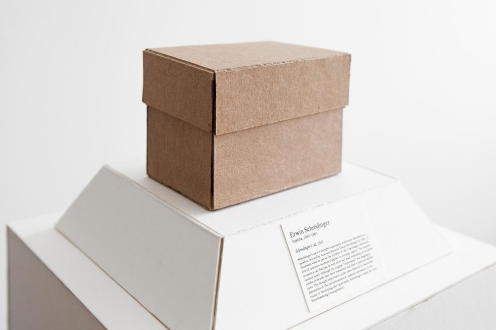 cat box.jpg