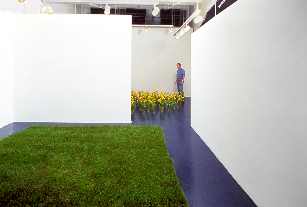 Flowers + Grass,  1990  Opus Gallery, Los Angeles