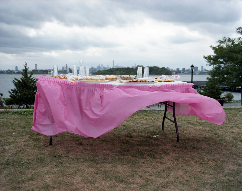Desert Table, Barretto Point Park, The Bronx, 2014