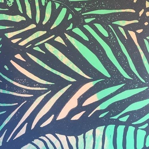 Zebra Fern   Hawaii