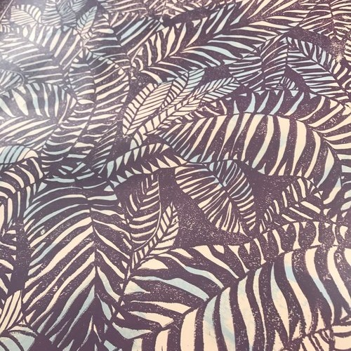 Zebra Fern   Tahiti