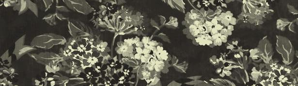 Water Lily Stencil.jpg