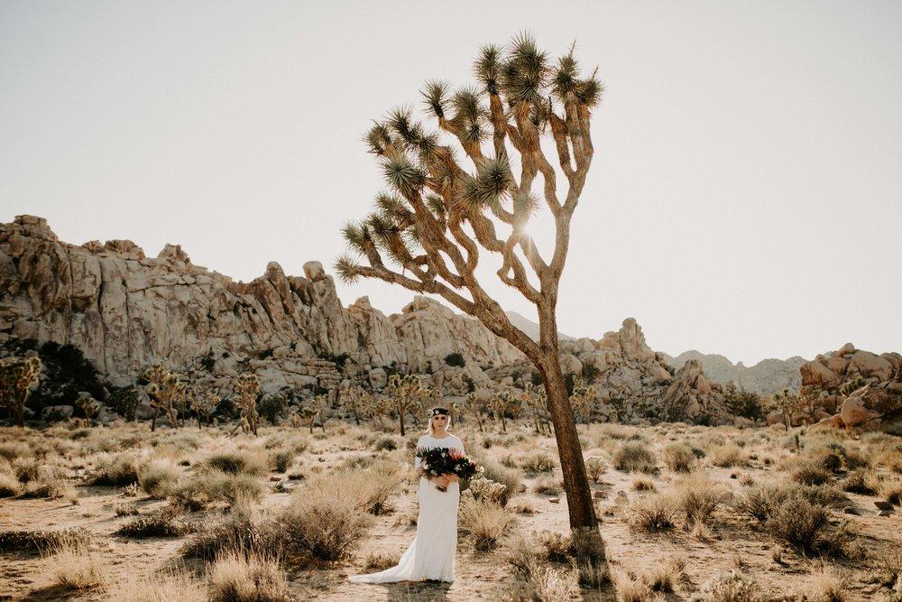 Elopement in Joshua Tree National Park in California