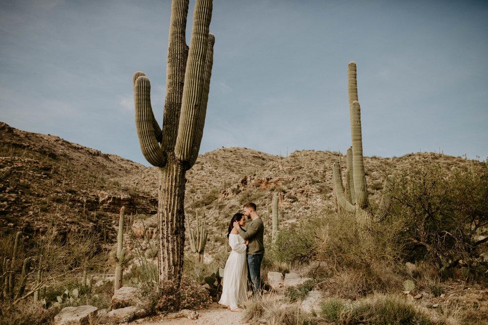 Saguaro cactus at Mount Lemmon in Tucson, Arizona