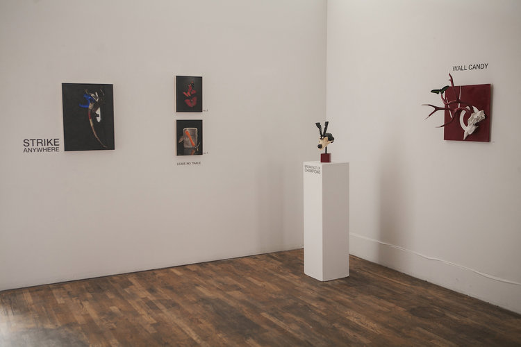 Selections from the solo exhibition at Leon Gallery Denver, 2017 - Photo © Amanda Tipton 2017