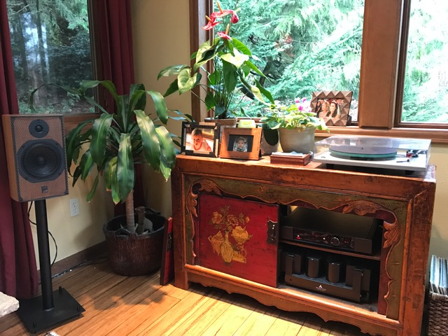 "Jim S System : ATC SCM-11 speakers, Gig Harbor Audio 24"" stands, Rega Elex-R integrated, Rega P3 turntable with Dynavetor 10x5 cartridge."