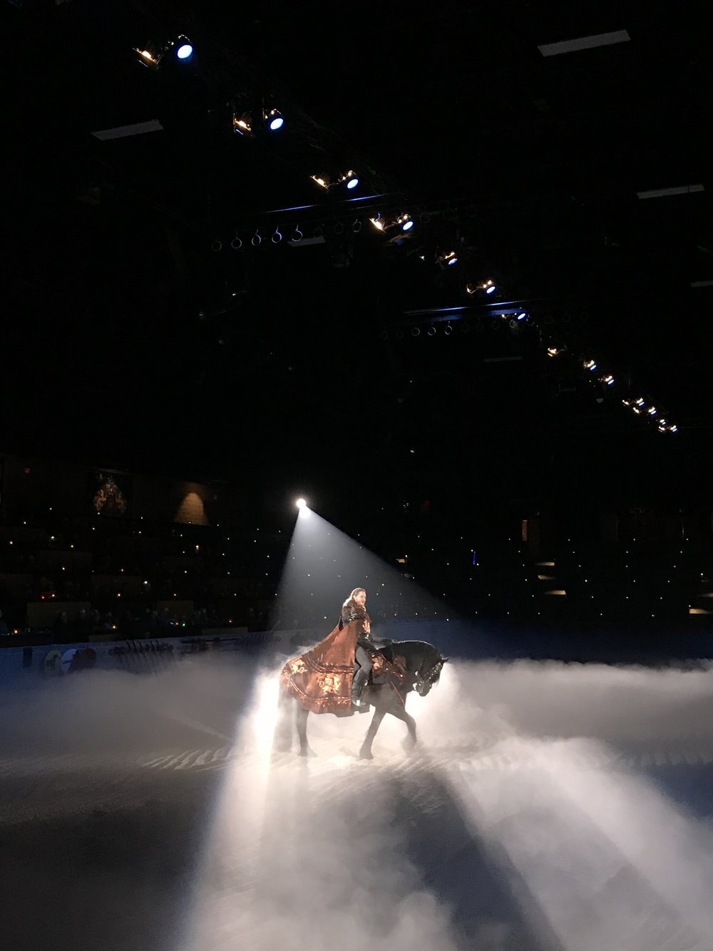 Medieval Times in Schaumburg, Illinois