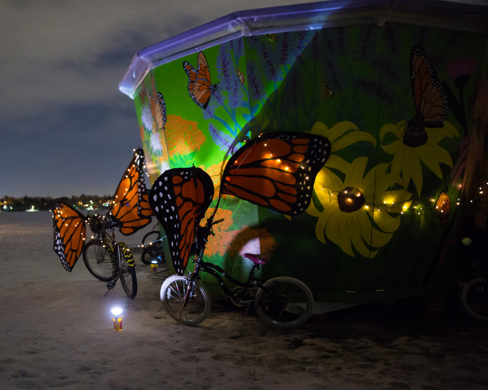 Monarch Butterfly Migration Shanty
