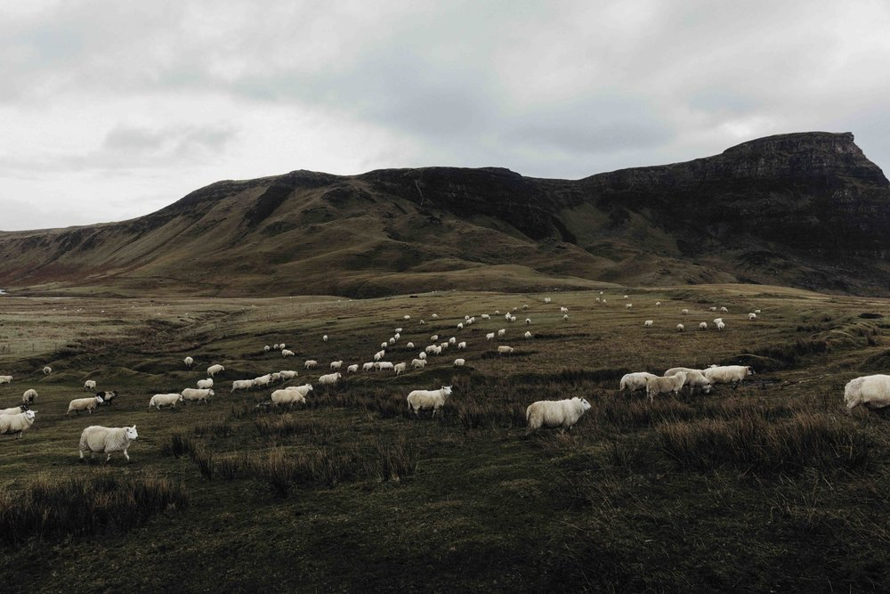 ISLE OF SKYE - Some recent travels....