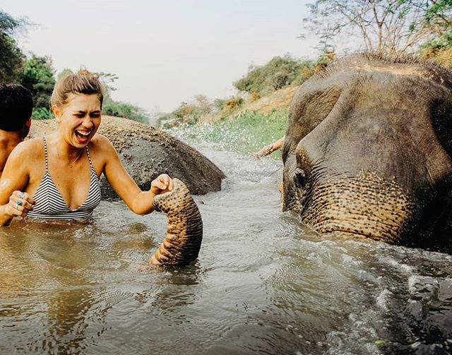In a water fight with an elephant, the elephant will win.