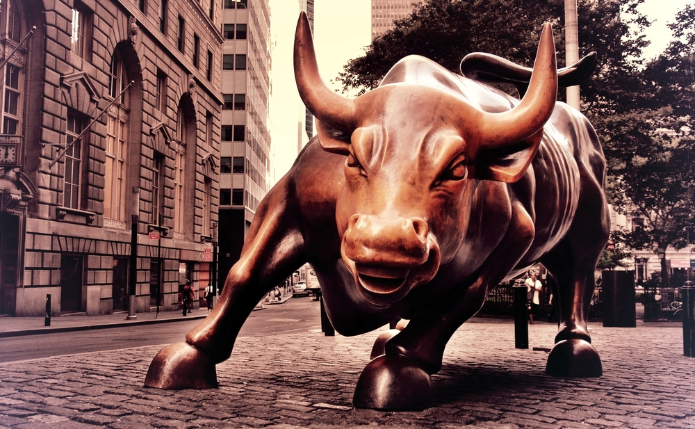 bull no bird.jpg