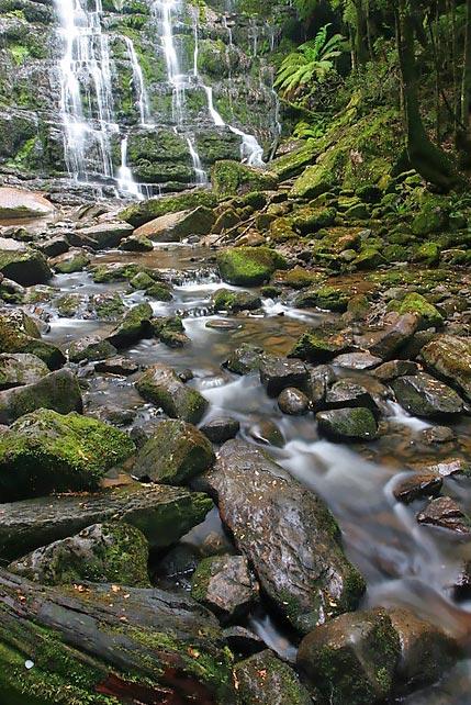 Nelson-Falls02.jpg